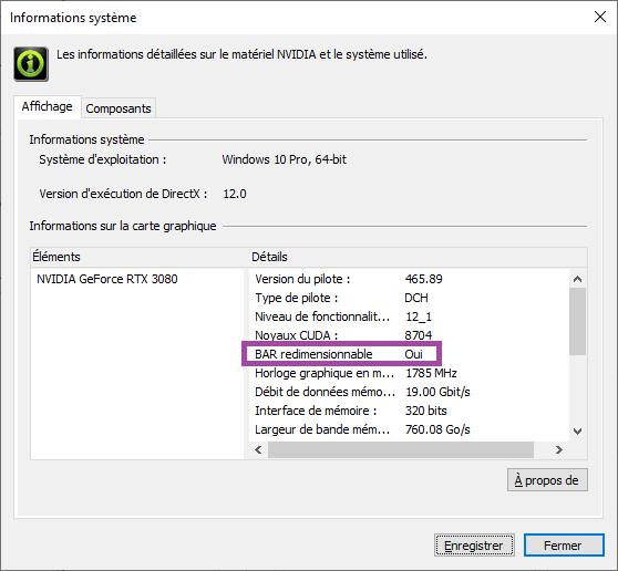 Resizable Bar Redimensionnable Driver Nvidia Pilote